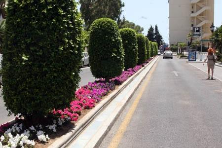 Aspecto de una avenida de Marbella tras los arreglos de los jardines