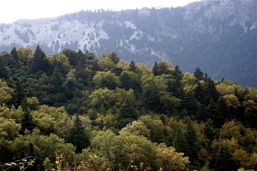 Sierra de Grazalema vista desde el aire