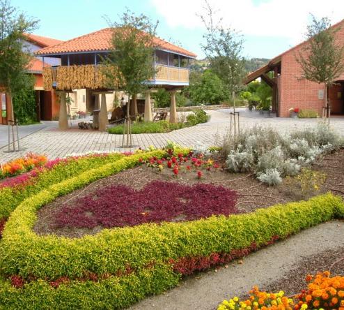 El jard n bot nico celebra la semana de la ciencia for Jardin botanico talleres