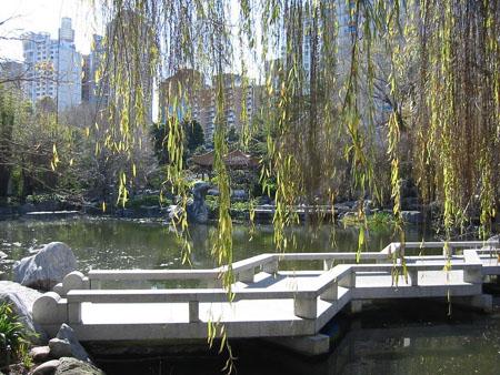 Sidney jard n chino de la amistad for Jardines chinos pequenos