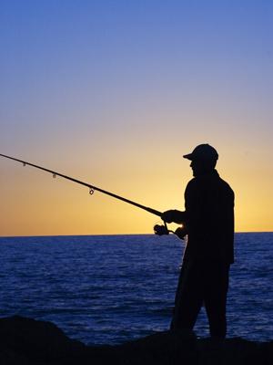 La caza la pesca la silla