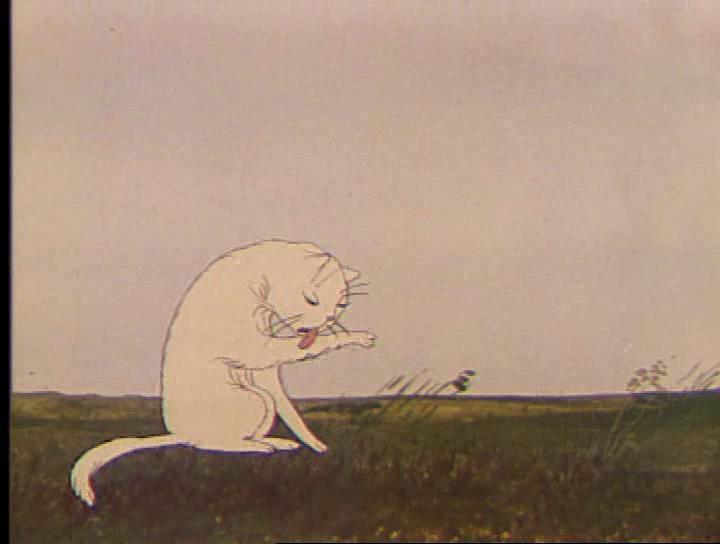 Resultado de imagen para al arbol y el gato cortometraje