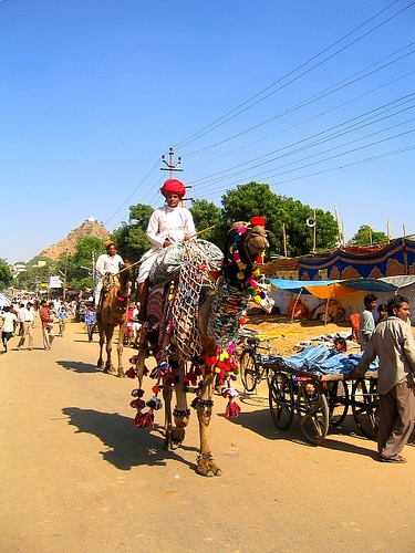 festivales-en-india-2