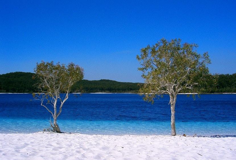 Isla Fraser