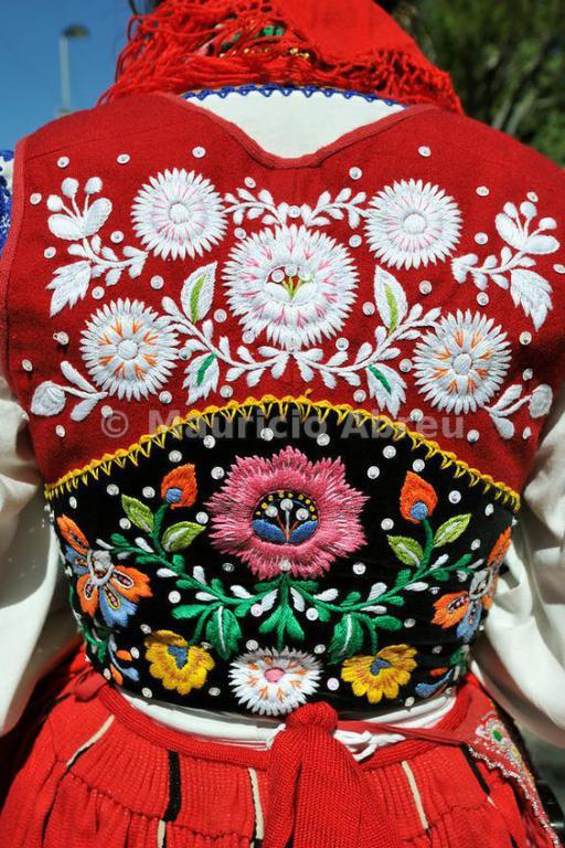 El kraplap se encuentra en muchos trajes holandeses 7228a3b8e1c