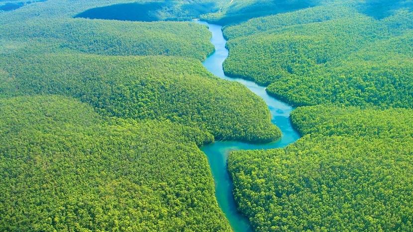 rio amazonas en la amazonia colombiana