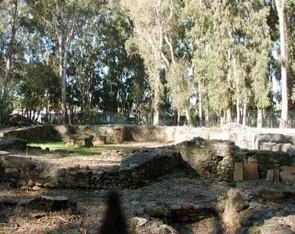 Basilica Paleocristiana Vega del Mar