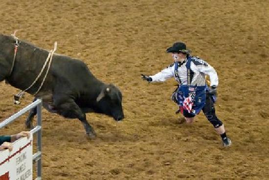 Clown ante toro en un rodeo