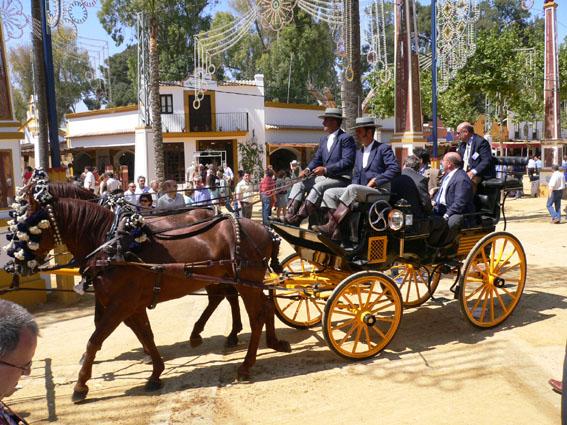 feria caballo municipio texcoco: