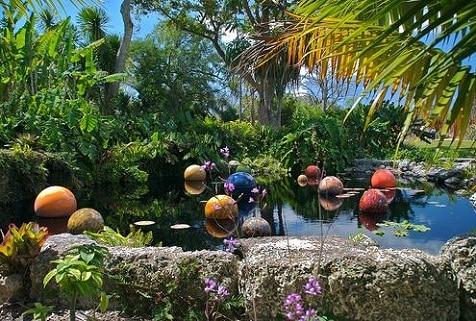 Fairchild tropical botanic garden el jard n bot nico de miami for Jardin botanico horario