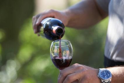 Un total de 148 vinos participan en el Concurso regional Agrocanarias 2018