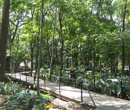 Visitar el jard n bot nico de medell n for Jardin botanico conciertos