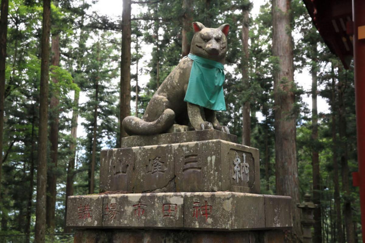 okami lobo japonés