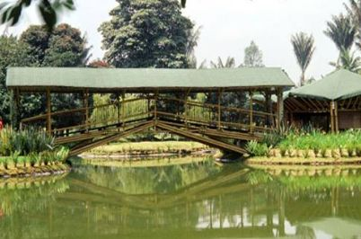 Jard n bot nico de bogot for Jardin botanico bogota