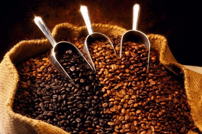 Feria del Café en Veracruz