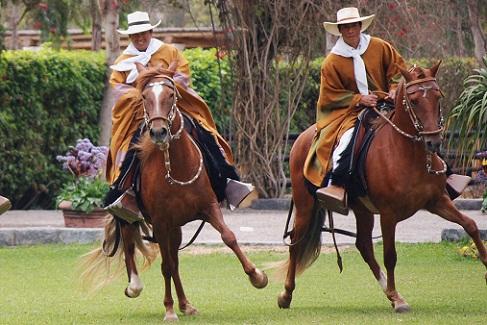 Resultado de imagen para Fiesta del Caballo de Paso Peruano
