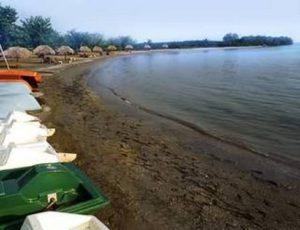 Playa Bibijagua 1