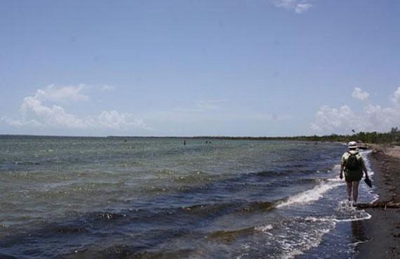 Playa Bibijagua 2