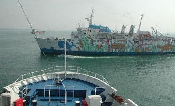 ferry a la isla Elba 2