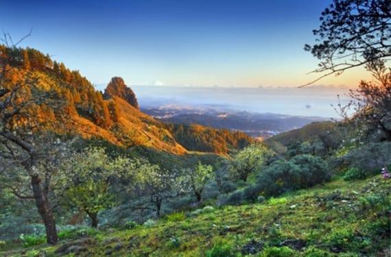 roques de Gran Canaria
