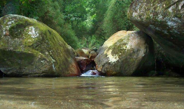 Paisaje en el Parque Nacional Henry Pittier