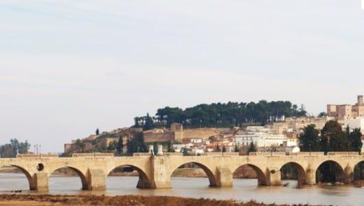 El Puente de Palmas