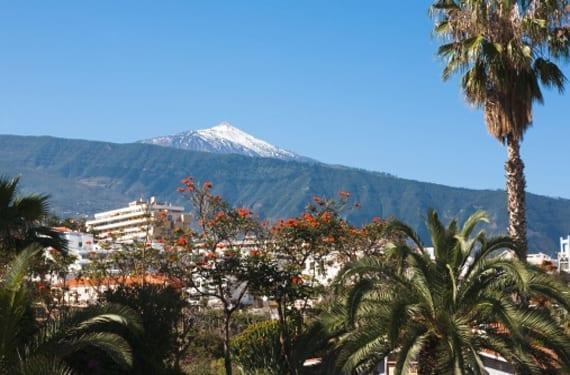 Vista de El Teide