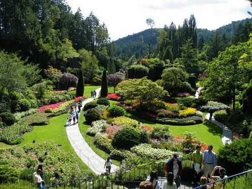 Los jardines butchart de victoria for Jardines butchart