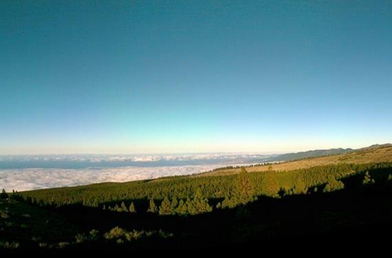 Naturaleza en Tenerife