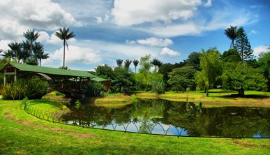 Jardín Botánico José Celestino Mutis en Bogotá
