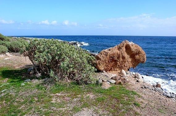 Costa de Granadilla