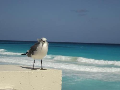 Turismo en la playa