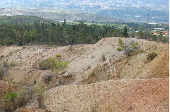 Desierto Candelaria