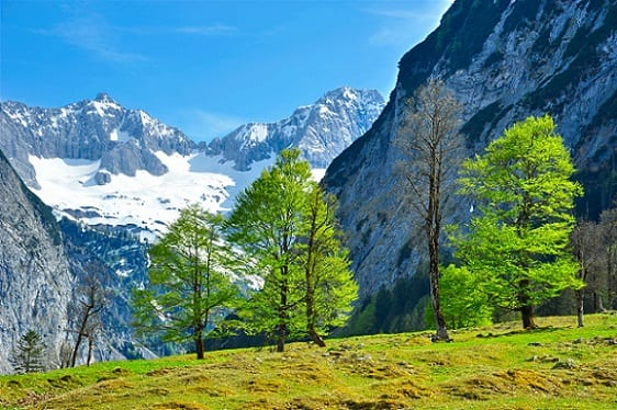 Suecia naturaleza