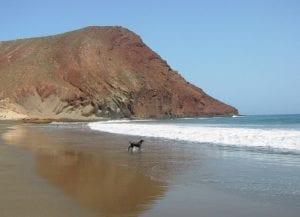 Playa de El Confital
