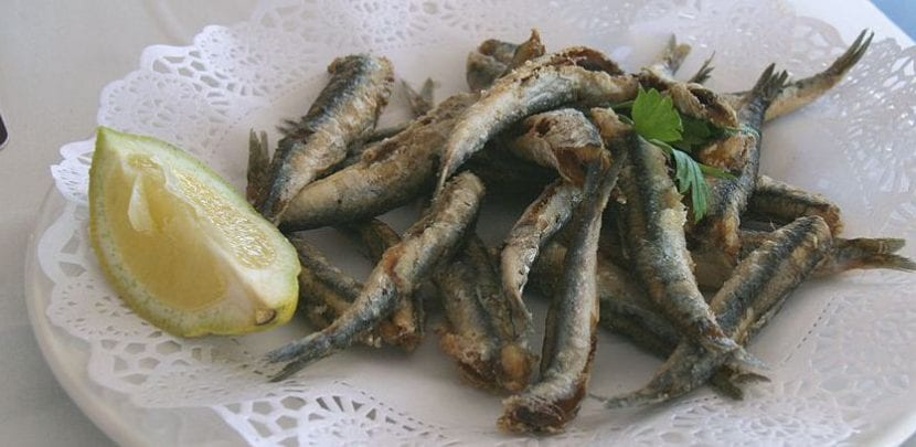 Pescado frito en Jerez