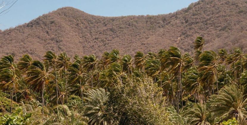 Isla Margarita en Venezuela