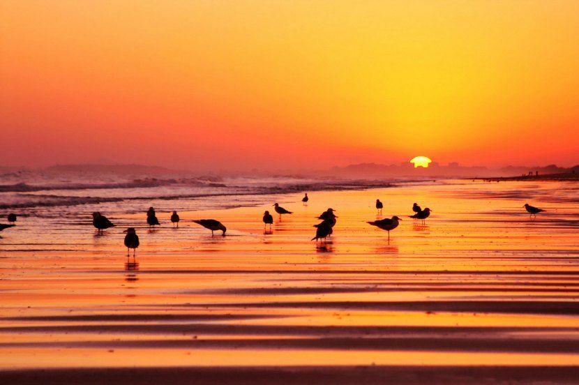 Playa de Isla cristina para vacaciones