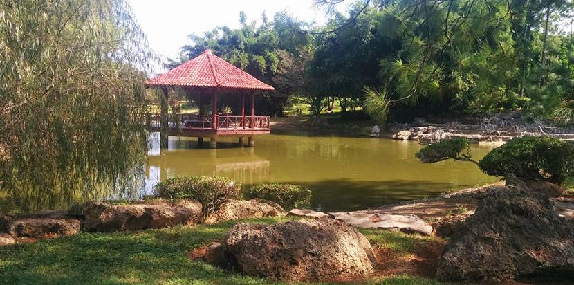 El jard n japon s de la habana for Jardin zoologico de la habana
