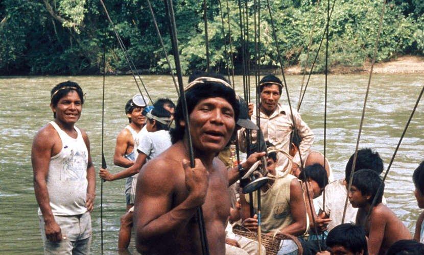 tribu bari