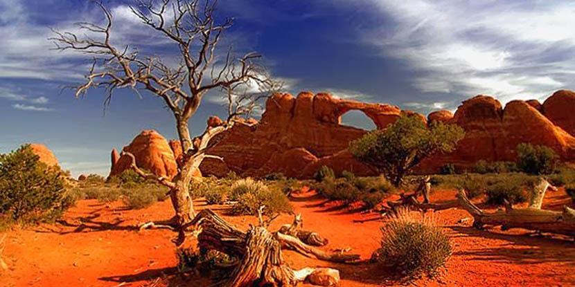 gran-desierto-de-victoria