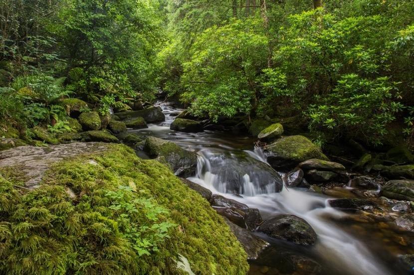Parque nacional Killarney en Irlanda, visita obligada
