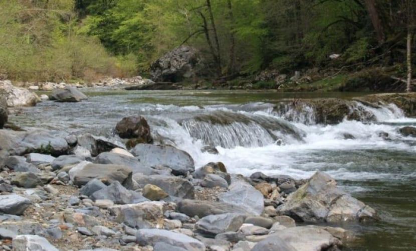 Río Selva Irati