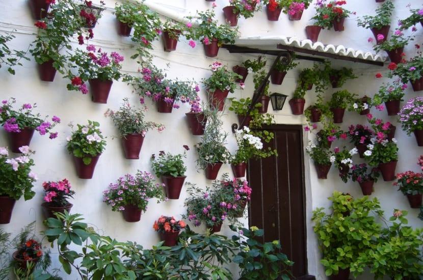 Tipos Patios de Córdoba