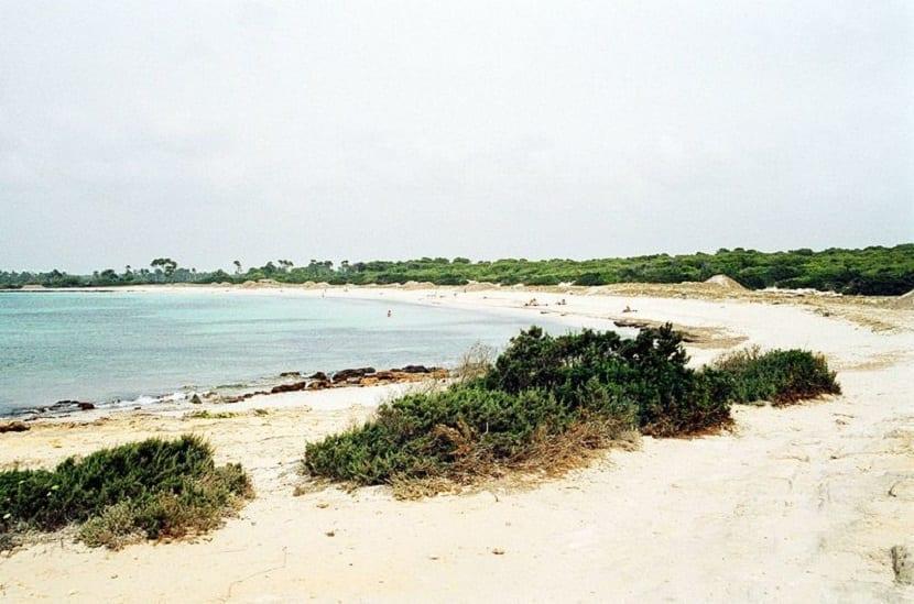 Playa D'es Caragol Mallorca