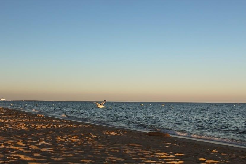 Playa da Lota