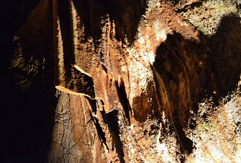 visita cuevas san jose