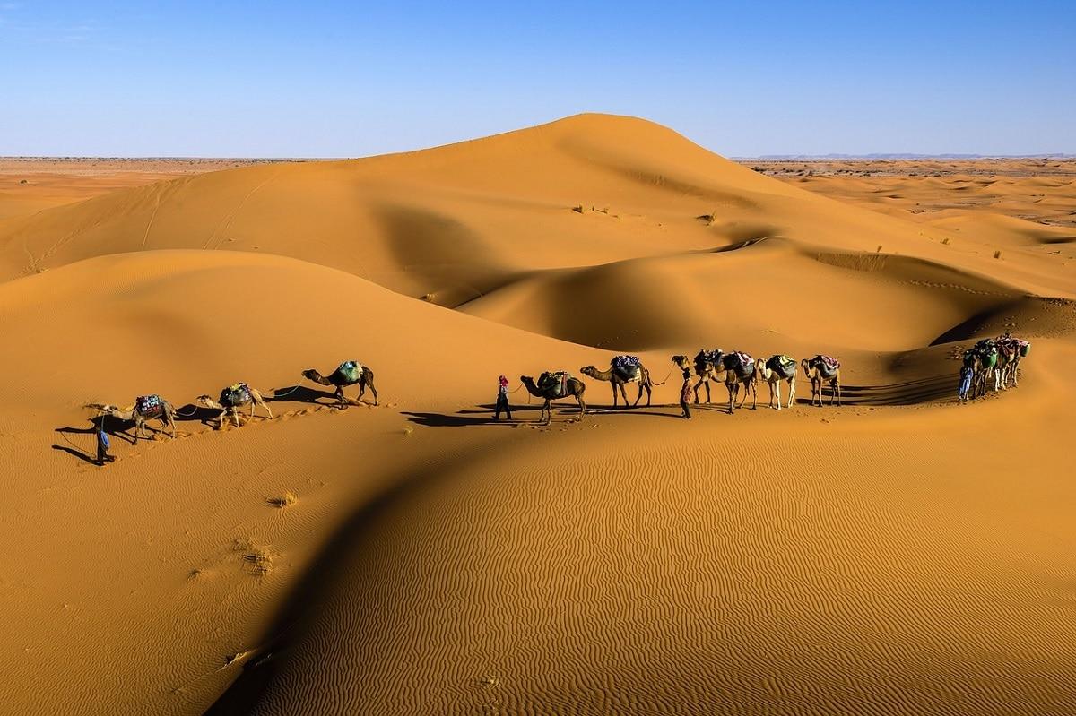 caravana desierto
